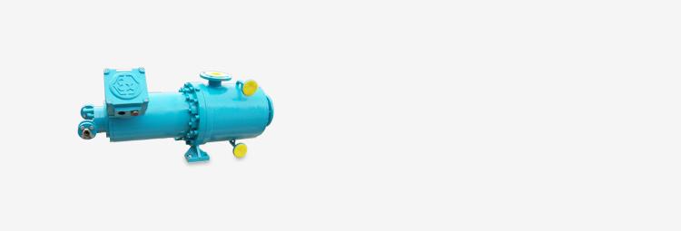 02 - bf071 - optimex canned motor pump - api685